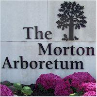 picture of the morton arboretum